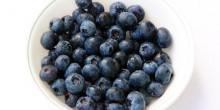 Blueberries & Voskos Greek Yogurt: Partners in Weight Loss