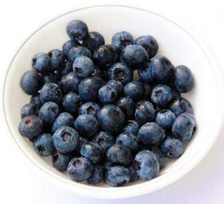 Blueberries & Voskos Greek Yogurt: Partners in Weight Loss